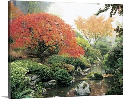 Japanese Garden I
