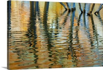 Lake Powell Reflections I