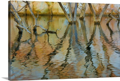 Lake Powell Reflections II