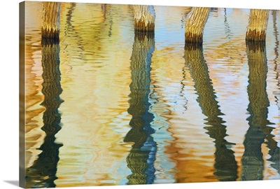 Lake Powell Reflections III