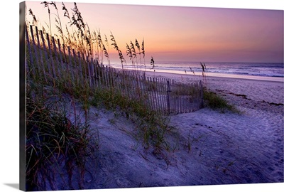 Lavender Beach I