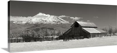 Mt. Shasta I