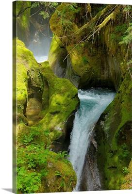 North Cascades National Park V