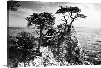 Ocean Cliff I
