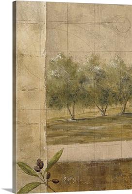 Olive Groves I CS