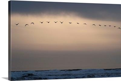 Oregon Coast Sunset I