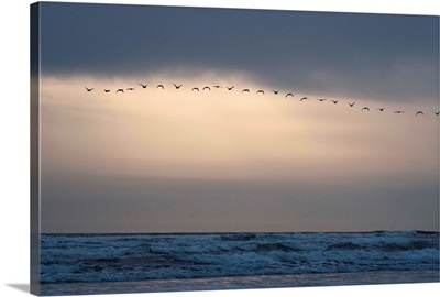 Oregon Coast Sunset II