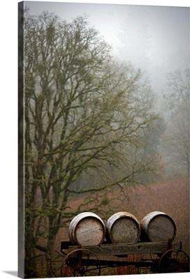 Oregon Wine Country I
