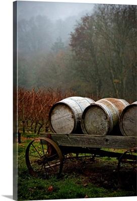 Oregon Wine Country II
