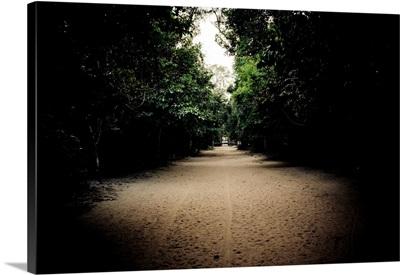 Pathway at Preah Khan