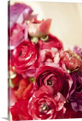 Peony Bouquet I
