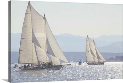 Port Townsend Boats II