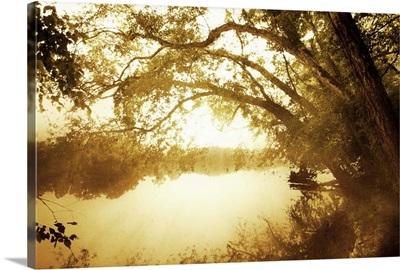 River Oaks II