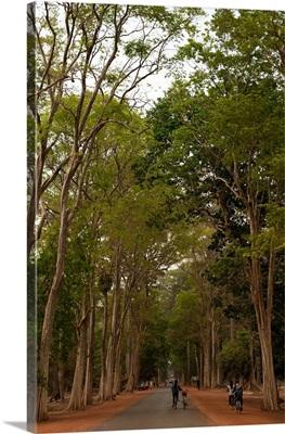 Road to Angkor