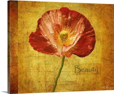 Royal Poppy Beauty