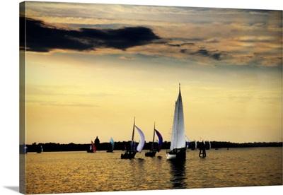 Sailing Home II