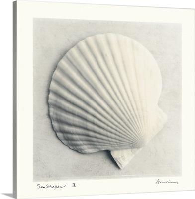 Sea Shapes II
