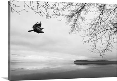Seabeck Winter I