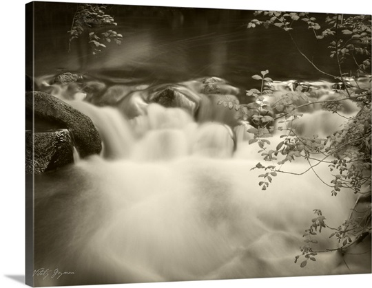 Sepia Waters IV