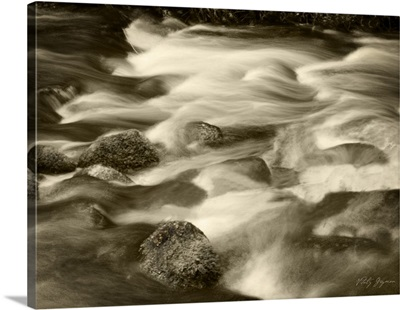 Sepia Waters V