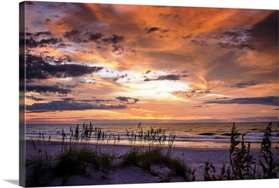 September Sunrise IV