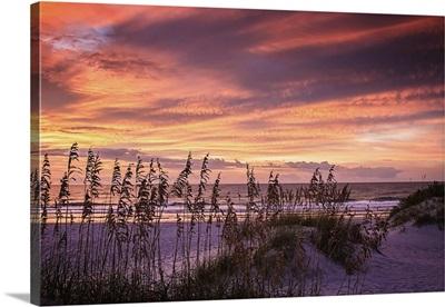 September Sunrise VI