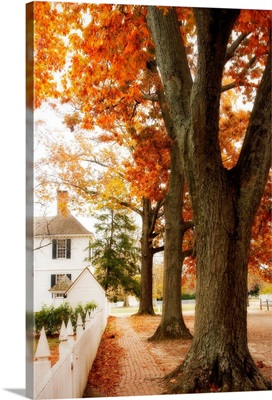 Small Town Autumn II