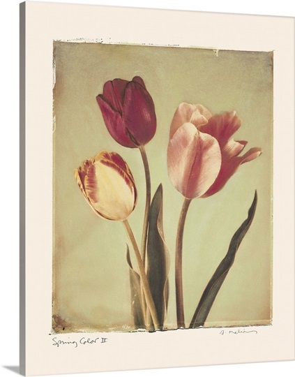 Spring Color II
