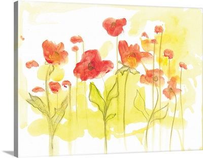 Spring Garden VI