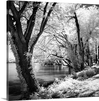 Spring on the River Square II