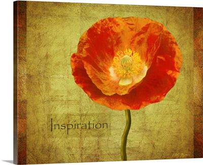 Sun Poppy Inspiration