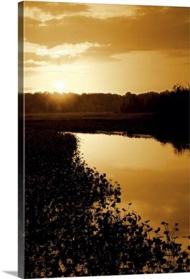 Sunset on the Lake I