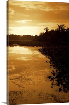 Sunset on the Lake II