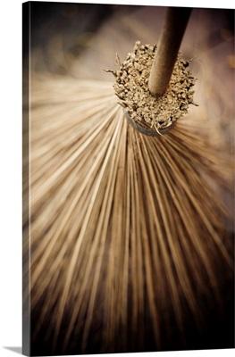 Thai Broom III