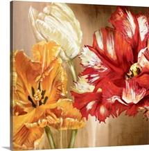 Tulips square