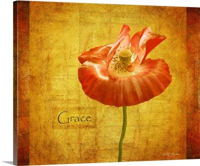 Velvet Poppy Grace