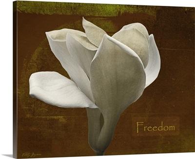 Zen Tulip Freedom