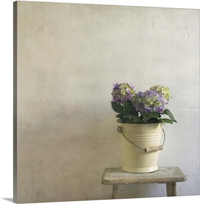 A metal bucket still life on an antique stool in a french Mediterranean house.
