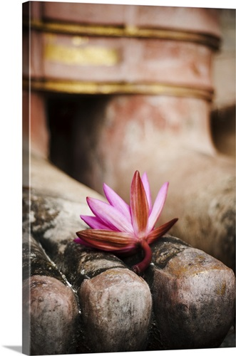 A pink lotus flower at the foot of a buddha statue wall art canvas a pink lotus flower at the foot of a buddha statue mightylinksfo