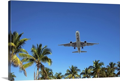Airplane landing in Miami