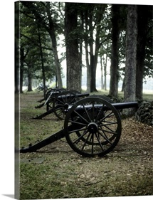 Antique cannons in woods