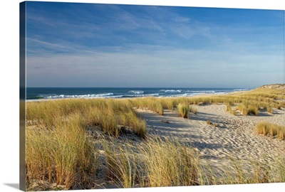 Atlantic Coast and its sand dunes and waves at Cape Ferret, Bay of Arcachon in Gironde.