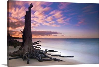 Barbie Island, Australia