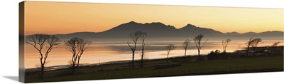 Bare trees at west coast with mountain in background at Scotland.