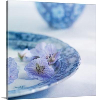 Blue flowers on antique blue patterned plate.