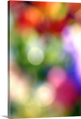 Blurred colors