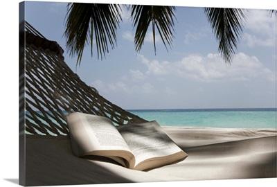 Book on a hammock under a palm