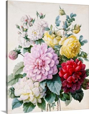 Bouquet Of Dahlias And Roses By Camille De Chantereine