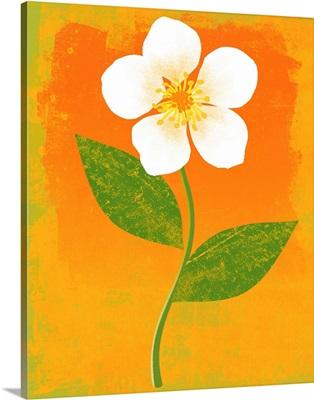 Bright Flower graphic poster illustration