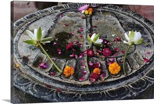 Buddha Footprint Mahabodhi Temple Bodh Gaya Gaya